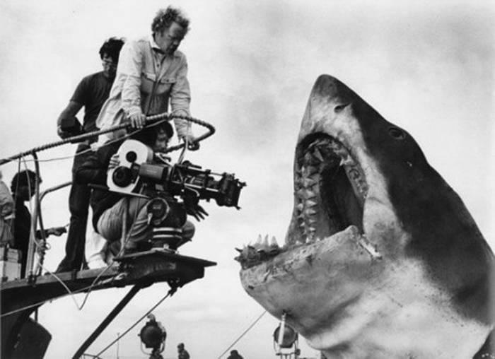 Tiburón (Steven Spielberg, 1975) 3