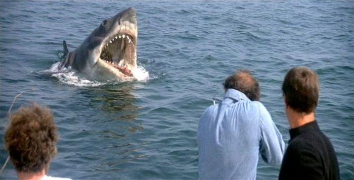 Tiburón (Steven Spielberg, 1975) 5