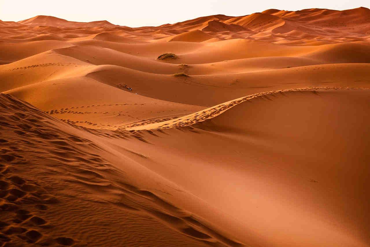 La misión del ser humano es convertirse en Desierto 1