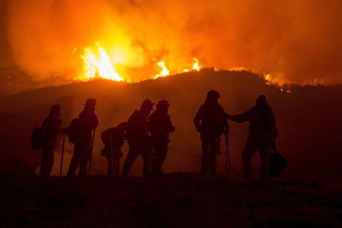 ¡Arde el bosque! 14