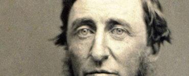 David Thoreau