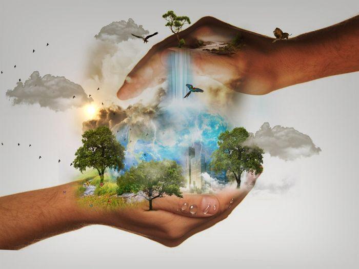 Ecología 4