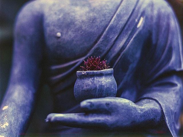 Encuentros filosóficos: Epicuro y el Zen 3