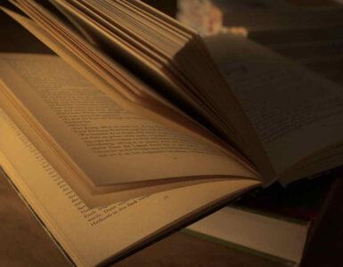 Acerca del estilo literario 2