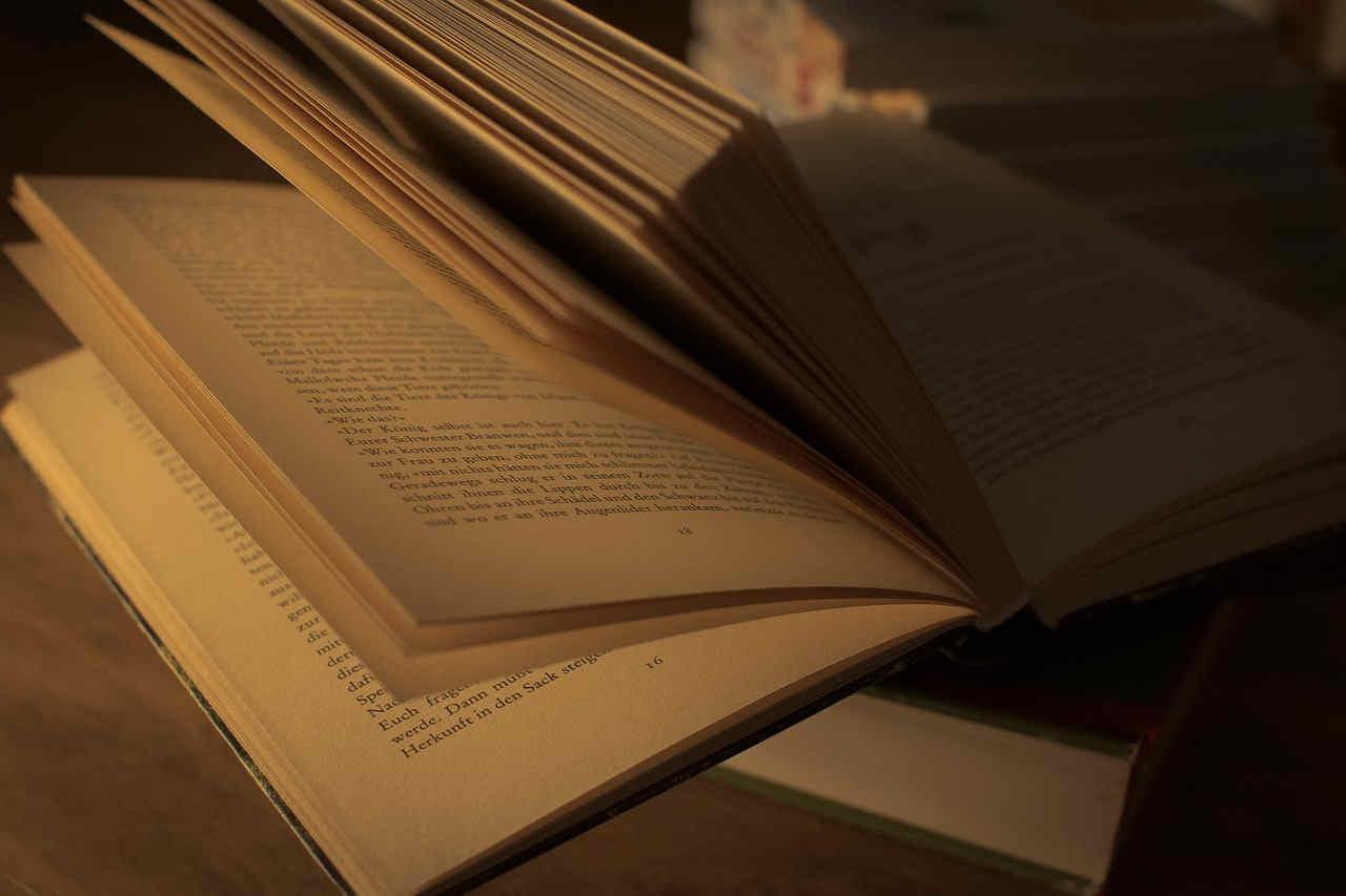 Acerca del estilo literario 1